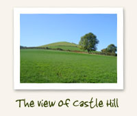 View of Castle Hill