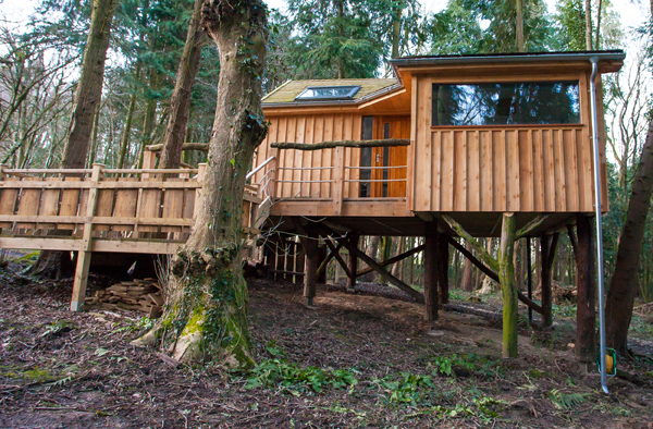 Treehouse side view, Californian
