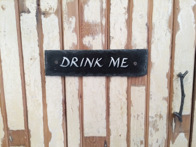 Birdhouse drink me sign